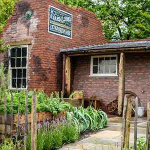 The Watchmaker's Garden Wins Platinum Award