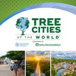 Birmingham Earns Prestigious Tree Cities of the World Status