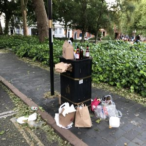 Litter Dumped in Birmingham Parks etc